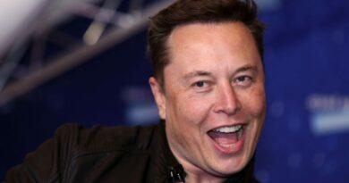 Elon Musk déclenche une forte augmentation de la crypto-monnaie après avoir tweeté la photo d'un nouveau chiot